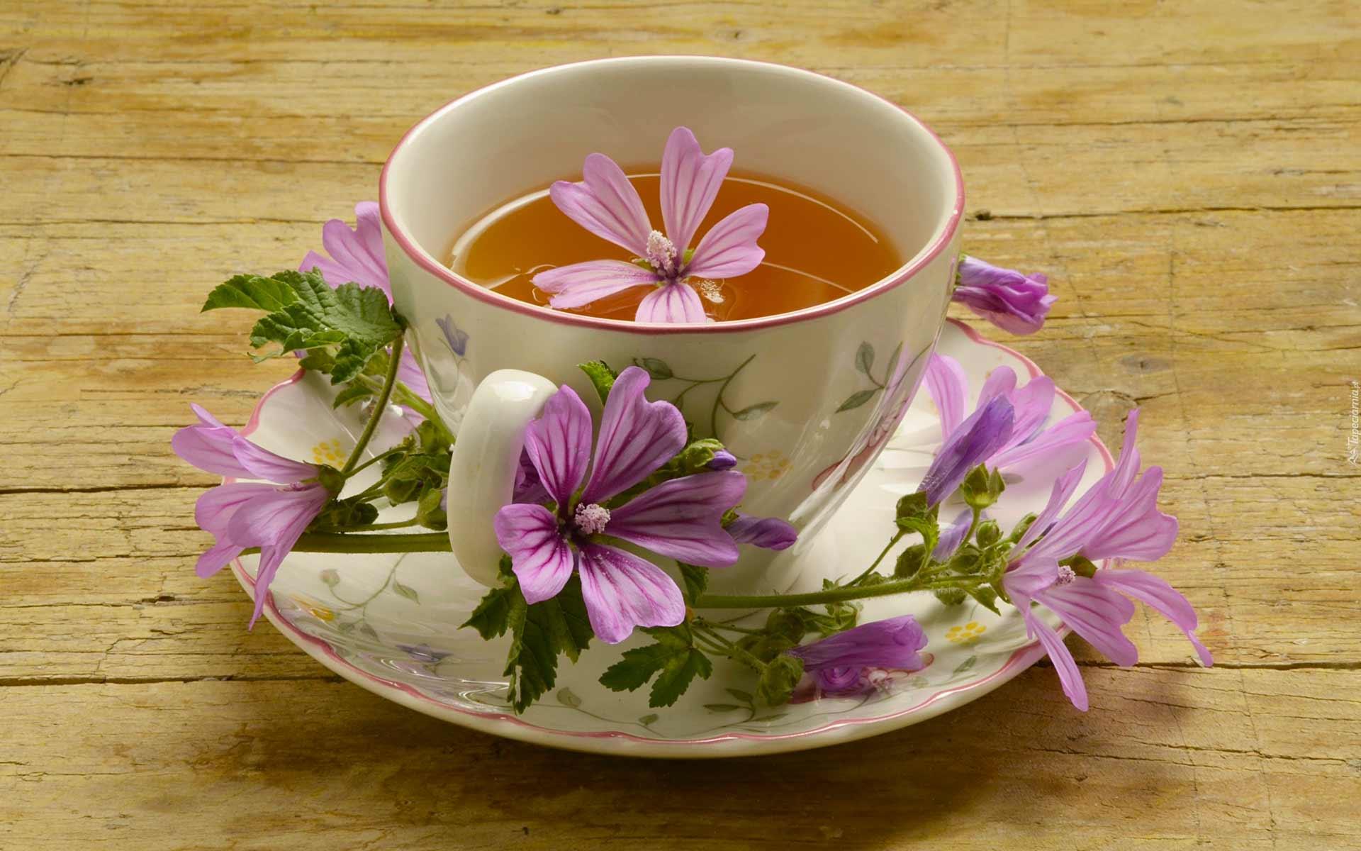 tazza di tisana alla malva
