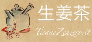 Tisane: gusto e benessere su Tisane Zenzero.it