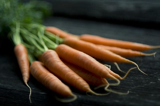 la carota è un esempio di radice a fittone tuberizzata